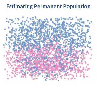 Permanet Population